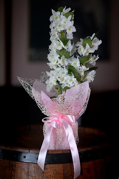 bambus orhideja