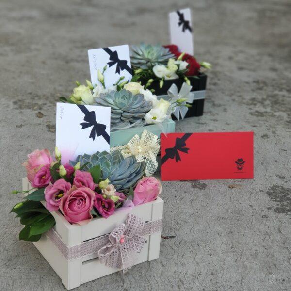cveće u kutiji sa čuvarkućom